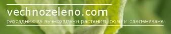 ЗП КРАСИМИРА ЯНЕВА